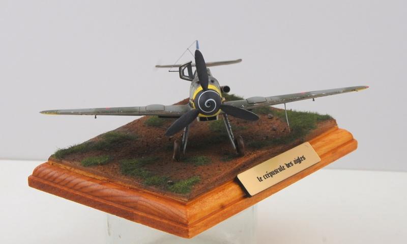Messerschmitt Bf109 G-10 - Le crépuscule des Aigles - Revell - 1/72 Dsc_0118