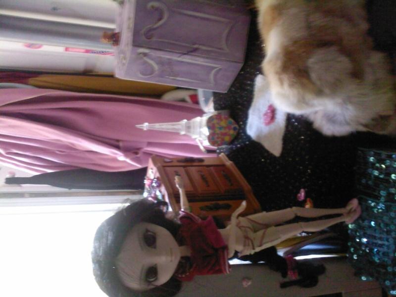 La dollHouse de ma pullip ! A11