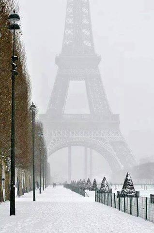Foto Nga Parisi - Faqe 20 10847910