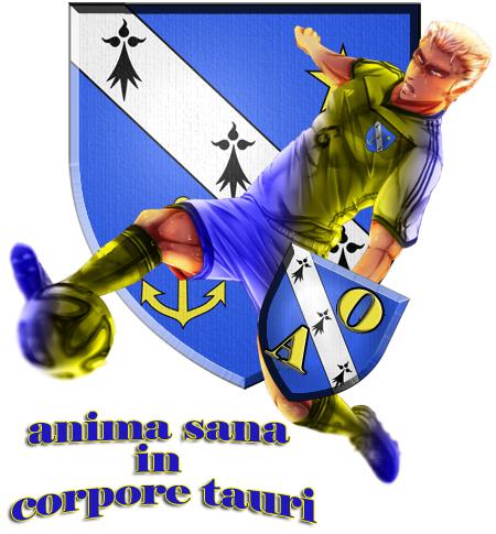 logo pour l'Olympique Almenêches 11/01/2014 (letisseur) Almene10