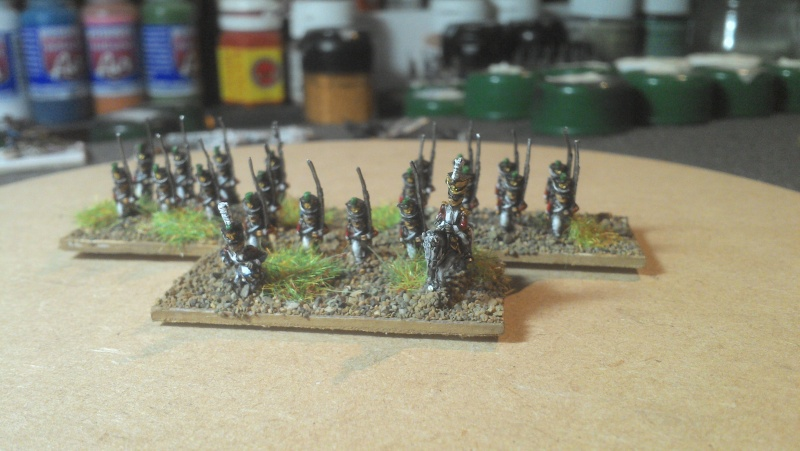 Armée 6mm pour Tactique - Page 2 Img_2038