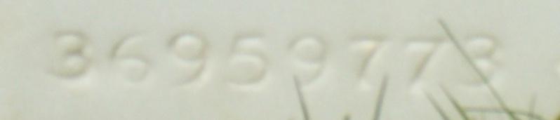 Cimetière Américain d'Epinal. P1140931