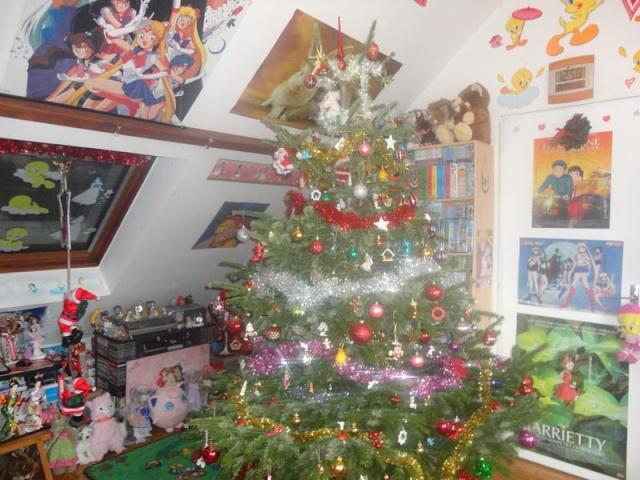 Votre décoration de Noel - Page 5 Dsc02010