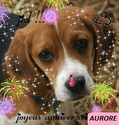 20 décembre 2012 Bon anniversaire Aurore 56938311