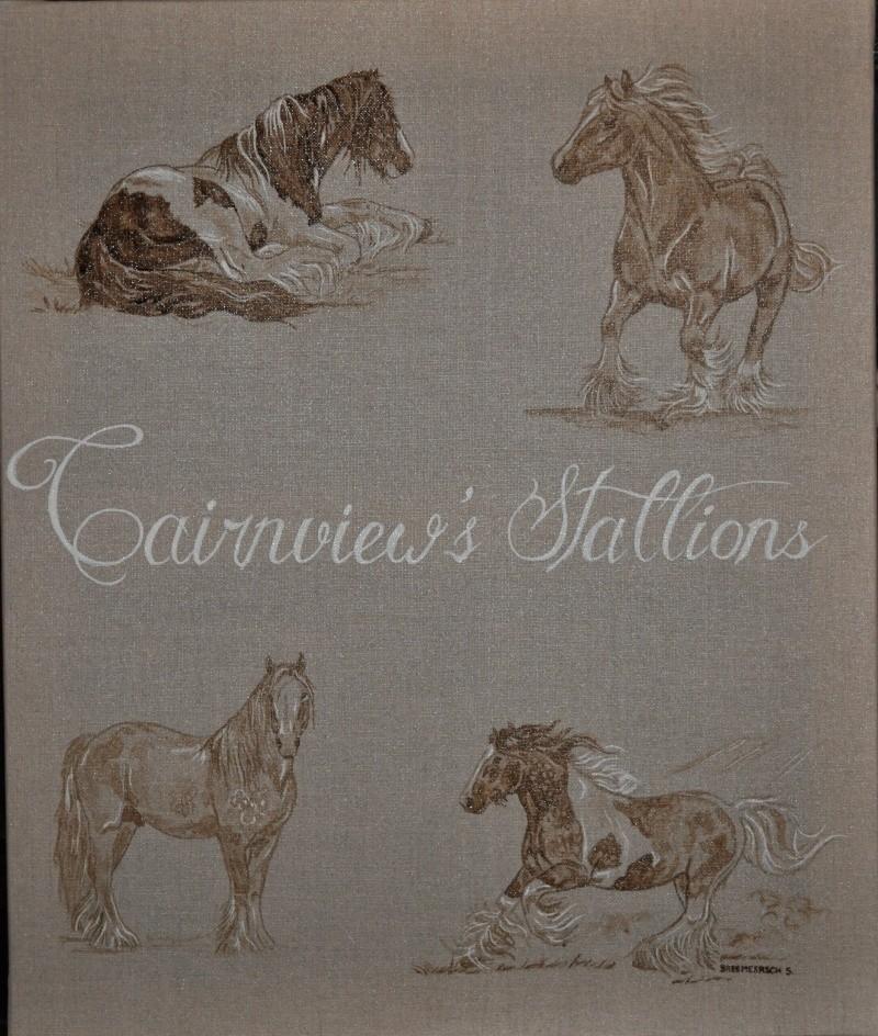 animaux:dessin,pyrogravure, peinture tissus, porcelaine etc.. - Page 5 Dsc_0019