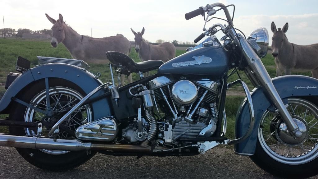 Les vieilles Harley....(ante 84) par Forum Passion-Harley - Page 7 Dsc_0223
