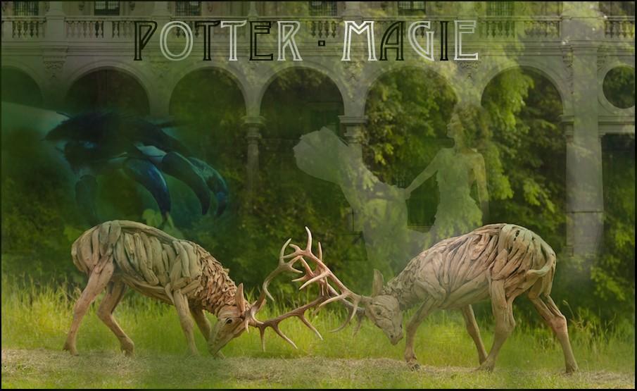 Potter-Magie