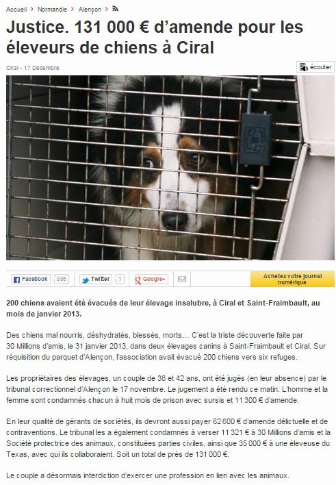 Orne 61 : près de 200 chiens saisis dans un élevage professionnel Of10