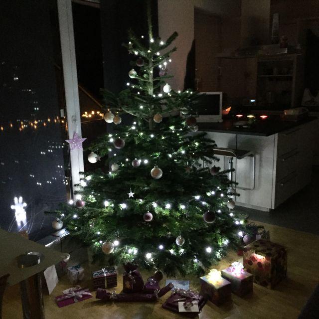Unser Tannenbaum Weihna12
