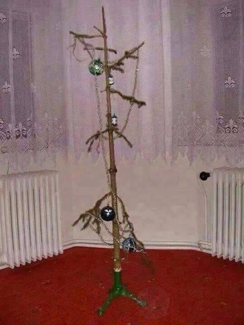 Unser Tannenbaum Unser_10