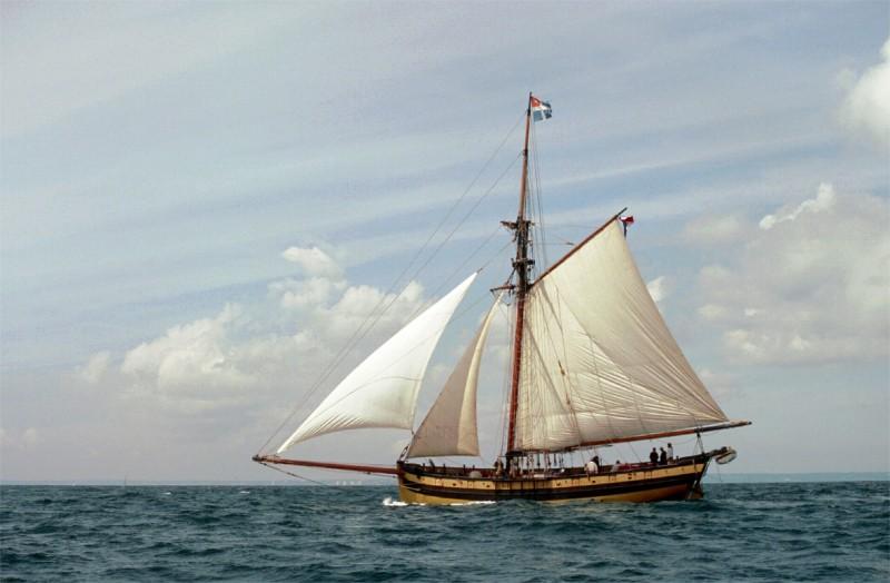 le bateau d'Ajonc à découvrir du 8 août trouvé par Cathy 310
