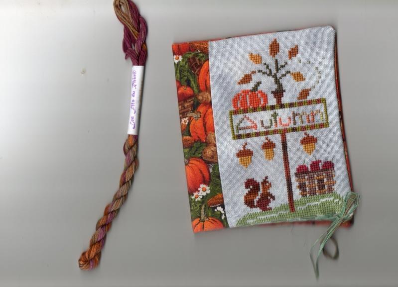 Photos range-aiguilles d'automne  Img03610