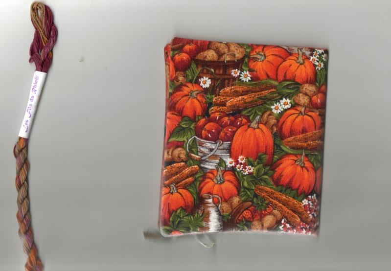Photos range-aiguilles d'automne  Img03810