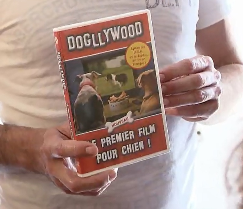 Happy Dog (M6): cherche participants - Page 13 Dvd-po10