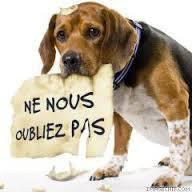 ENFIN AU CHAUD !!! Ne_nou10