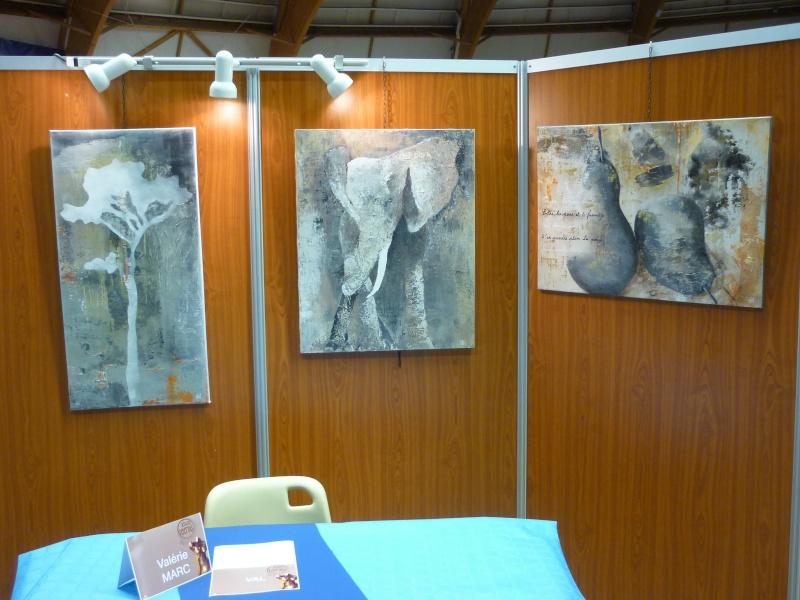 Expo à Hyères  (pat5) Expo_212