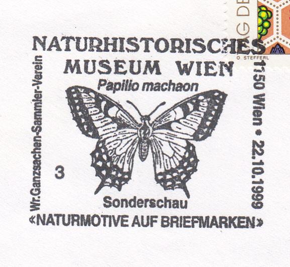 Schmetterlinge - Seite 3 Img65