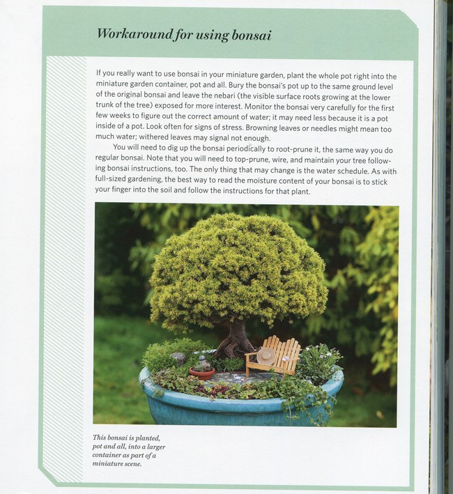g. Mini Book Reviews: I Beginner's Books Garden11