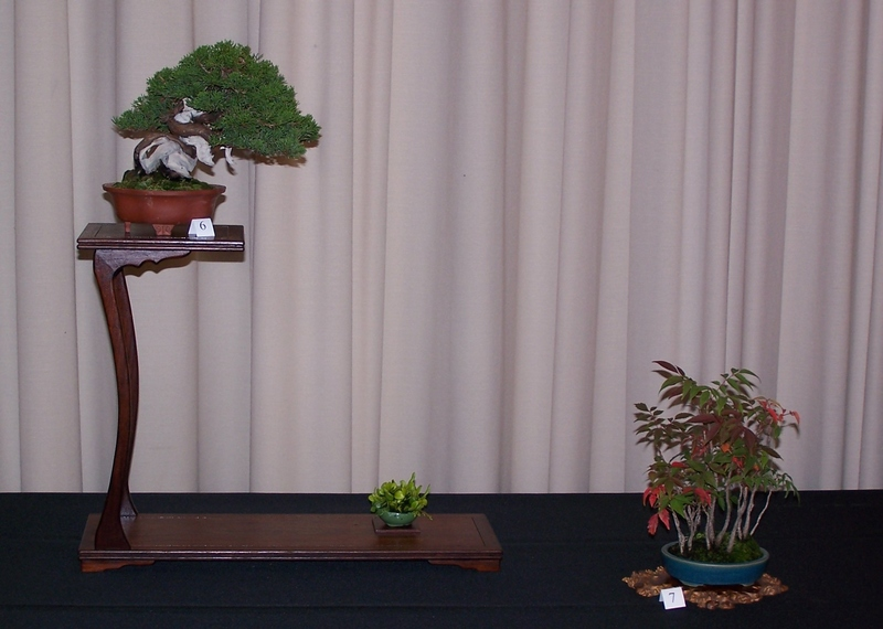 Carolina Bonsai Expo 2014 Itioga10