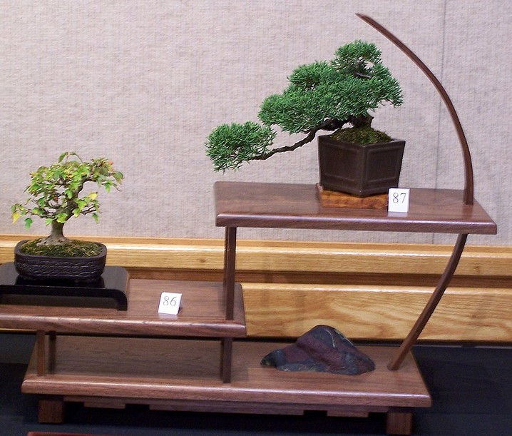 Carolina Bonsai Expo 2014 Triden11