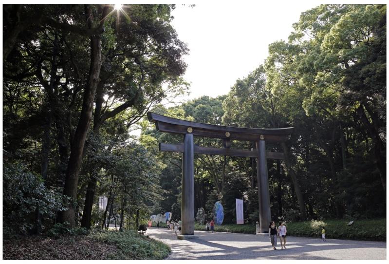 Nippon Suiseki Meihinten 2014 (54th)- photos by Jeff Amas Meiji_10