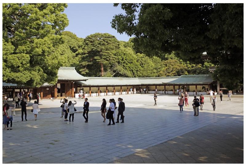 Nippon Suiseki Meihinten 2014 (54th)- photos by Jeff Amas Outdoo10