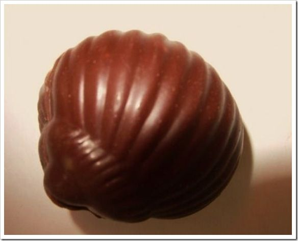 Escargots en chocolat 53137010
