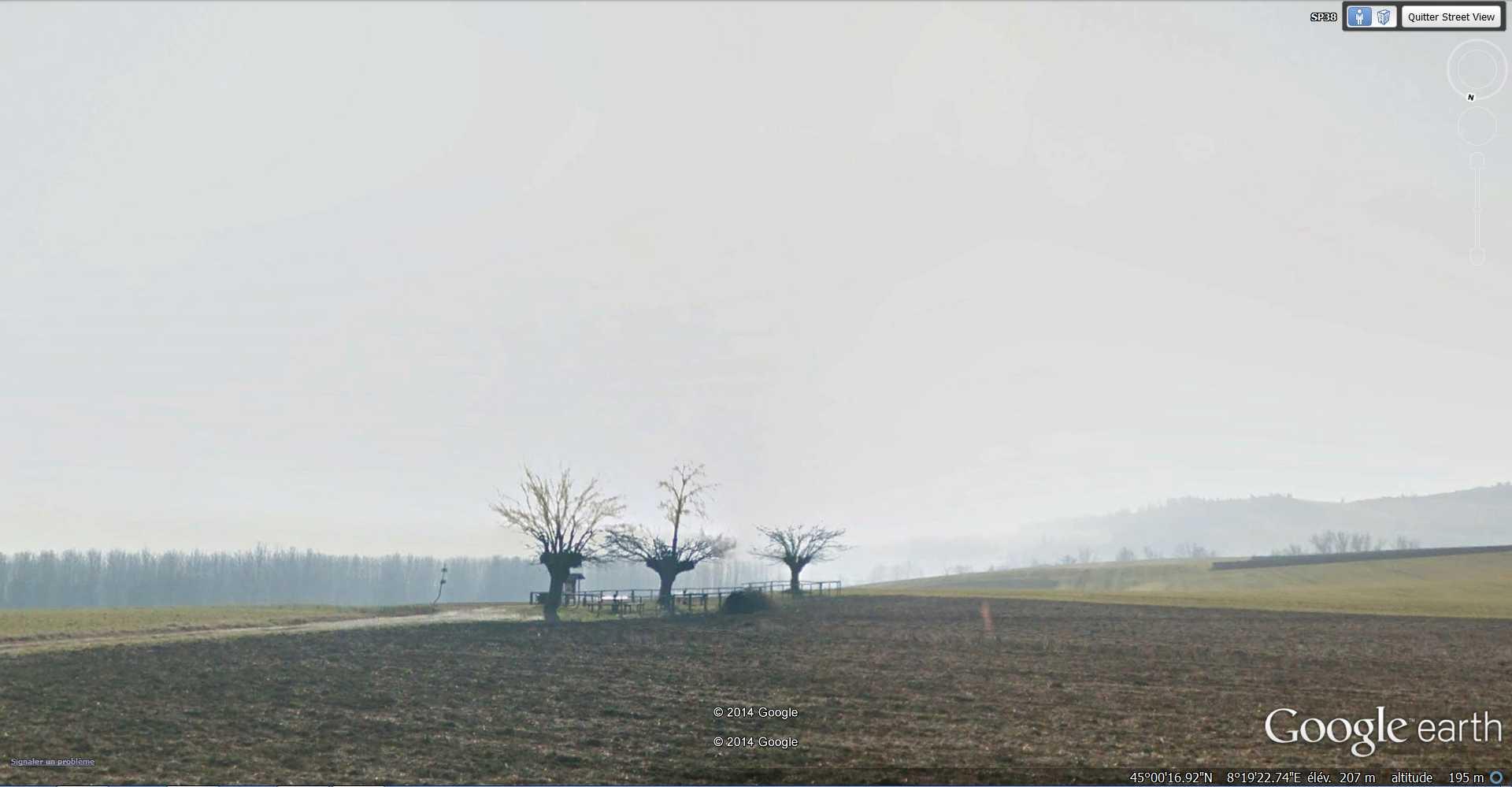 Bialbero di Casorzo - Casorzo - Piémont - Italie  2014-186