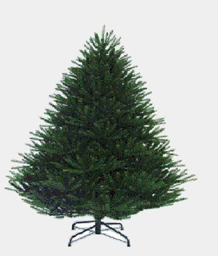Classifica di L'albero di Natale 2018!! Albero10