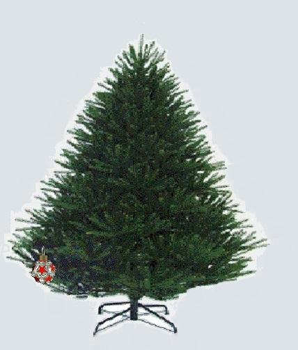 Classifica di L'albero di Natale 2018!! Albero15