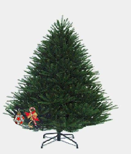 Classifica di L'albero di Natale 2018!! Albero16