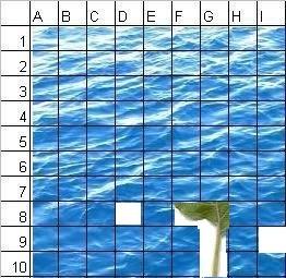 cos'è finito in fondo al mare??? - Pagina 2 Quiz-m15