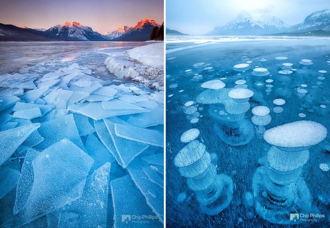 Vẻ đẹp lạnh giá của băng tuyết 10-14113