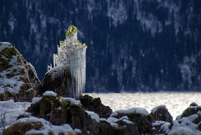 Vẻ đẹp lạnh giá của băng tuyết 14-14112