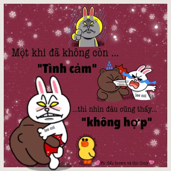 Chuyện Gấu Brown và thỏ Cony - Page 3 1d1e2e10