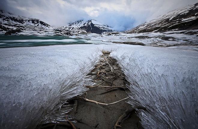 Vẻ đẹp lạnh giá của băng tuyết 22-14111