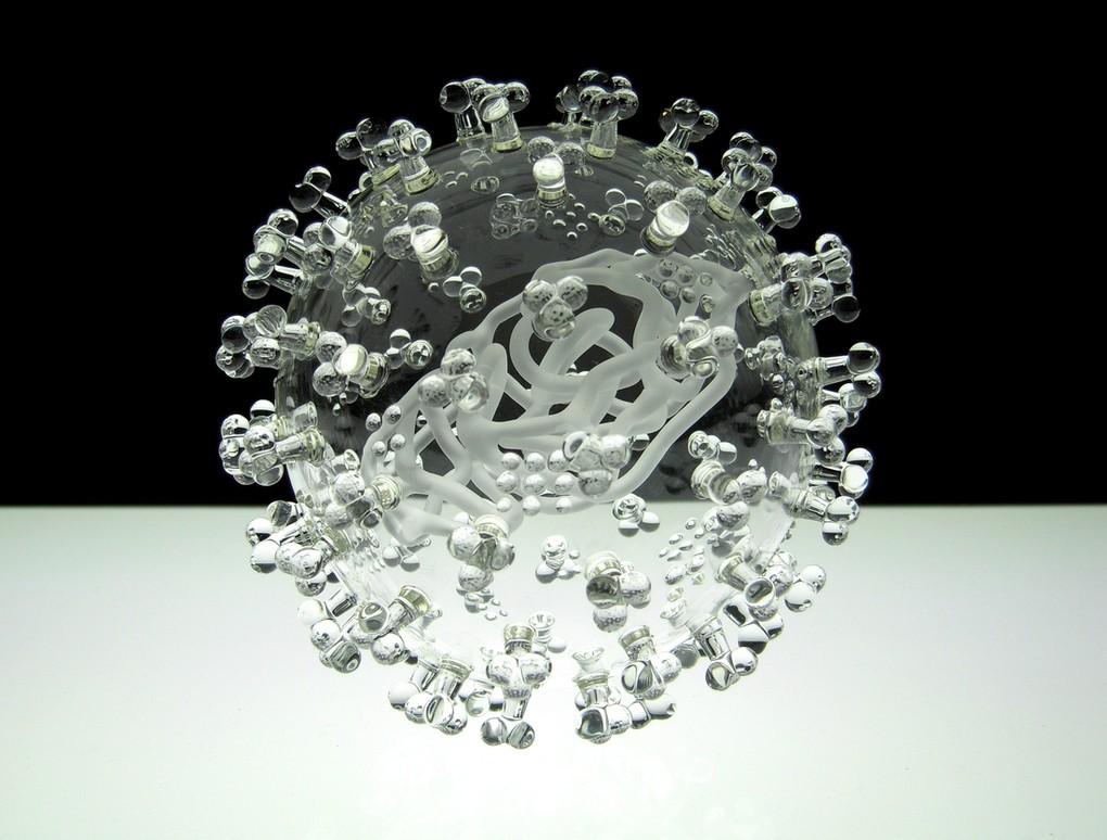 Khi những con virus chết người biến thành nghệ thuật 23122911