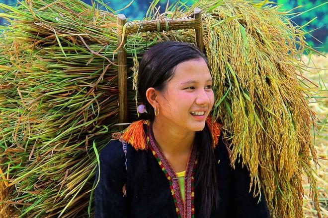 Khoảnh khắc cuộc sống bình dị, nên thơ ở làng quê Việt Cuoc-t11