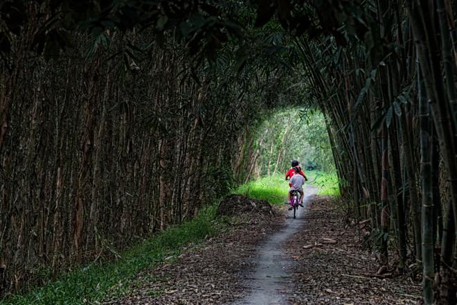 Khoảnh khắc cuộc sống bình dị, nên thơ ở làng quê Việt Cuoc-t22