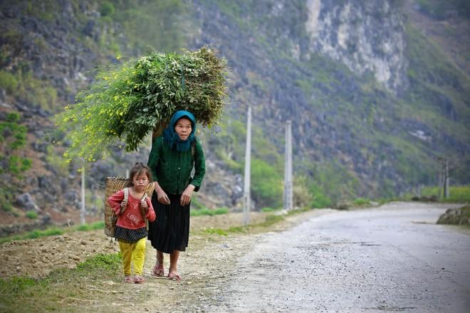 Khoảnh khắc cuộc sống bình dị, nên thơ ở làng quê Việt Cuoc-t23