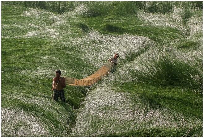 Khoảnh khắc cuộc sống bình dị, nên thơ ở làng quê Việt Cuoc-t24
