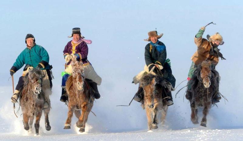 Ngựa phi trên thảo nguyên Mông Cổ  Ng710