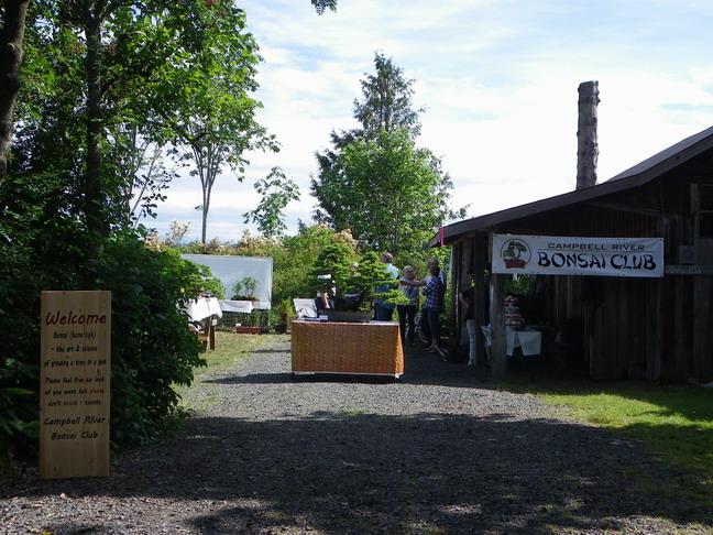 Campbell River Bonsai Club 5th Annual Show Crbc_210