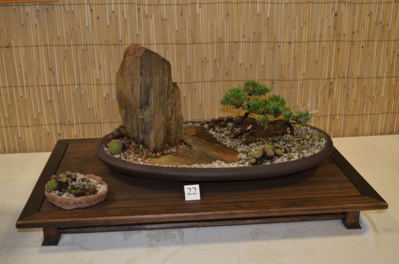 Carolina Bonsai Expo 2014 Dsc_0013