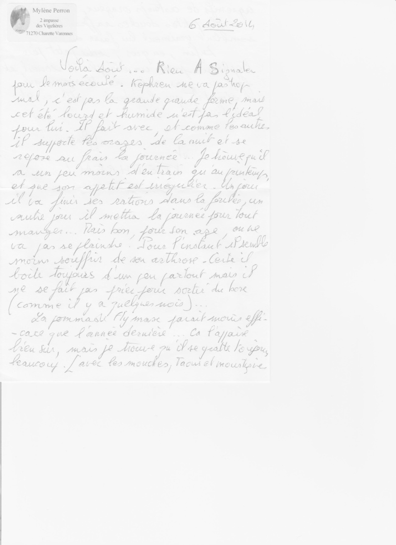 KEPHREN - ONC Selle présumé né en 1993 - Protégé GPLV - Page 6 Kephre10