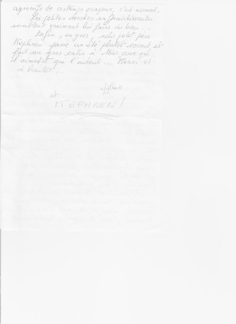 KEPHREN - ONC Selle présumé né en 1993 - Protégé GPLV - Page 6 Kephre11