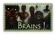 Devenir amis ? Brains12
