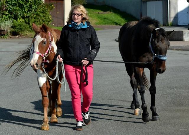 WALANIE (VANILLE) - ONC poney - adoptée en avril 2011 par voulk  - Page 6 10585310