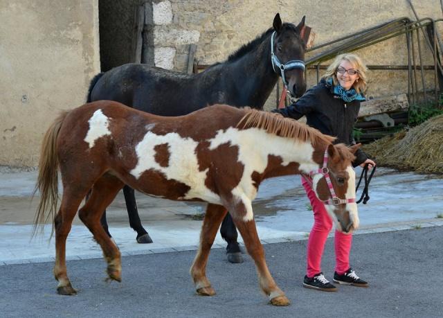 WALANIE (VANILLE) - ONC poney - adoptée en avril 2011 par voulk  - Page 6 10711110
