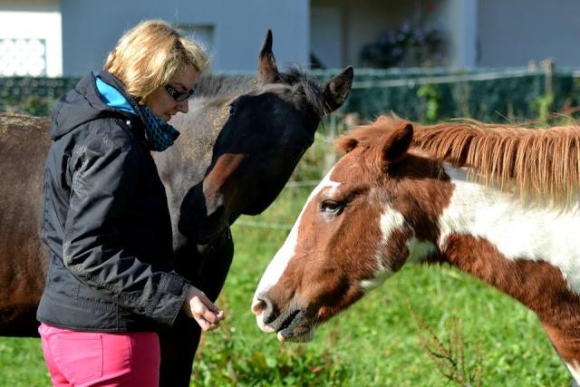 WALANIE (VANILLE) - ONC poney - adoptée en avril 2011 par voulk  - Page 6 10711210